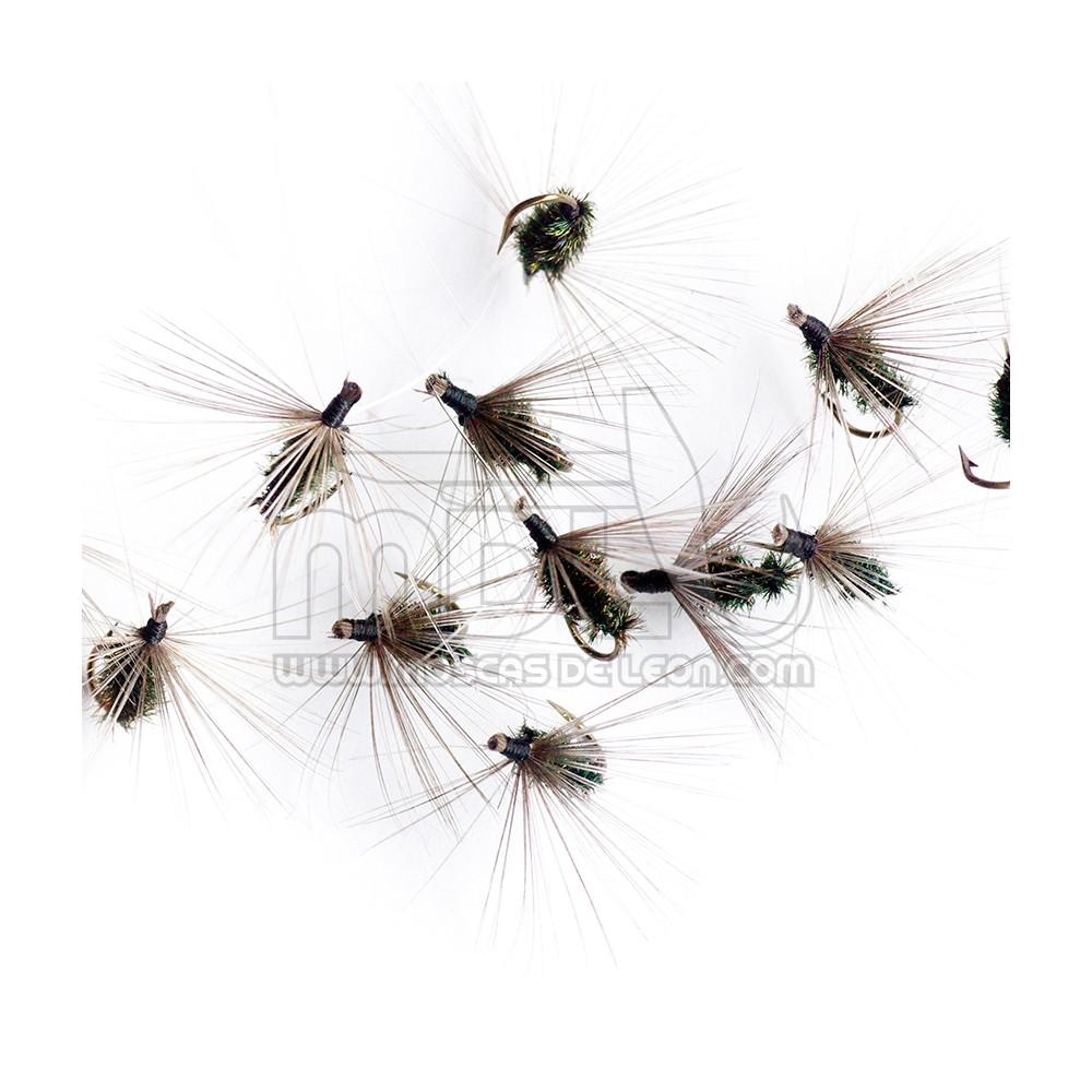 Ahogada Hormiga común pavo real