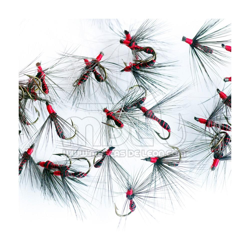 Ahogada Hormiga común brinca roja